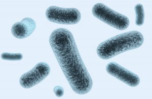 新型コロナウイルス - 日本の新型コロナウイルス感染者数と感染防止法