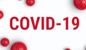 COVID-19 - The BEST EAのEUR/USD機能はコロナ禍でも大活躍!